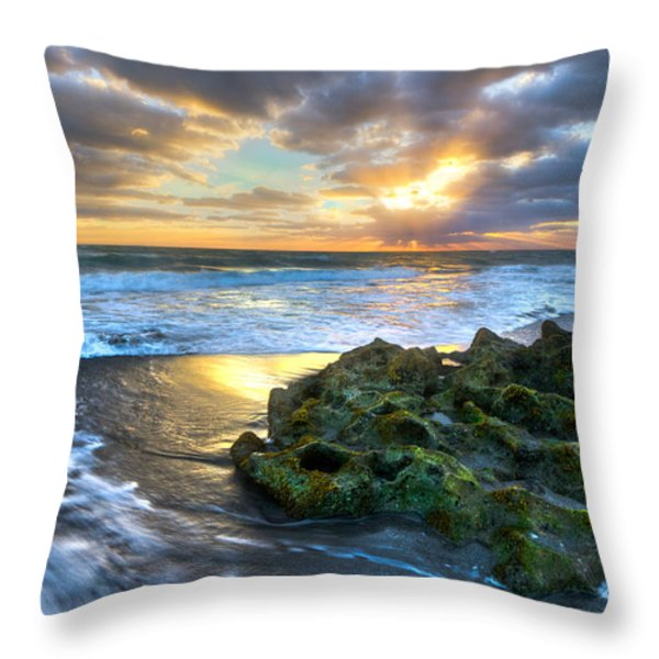 Green And Gold Throw Pillow by Debra and Dave Vanderlaan