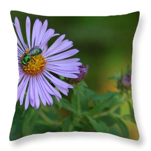 Green And Purple Throw Pillow by Doris Potter