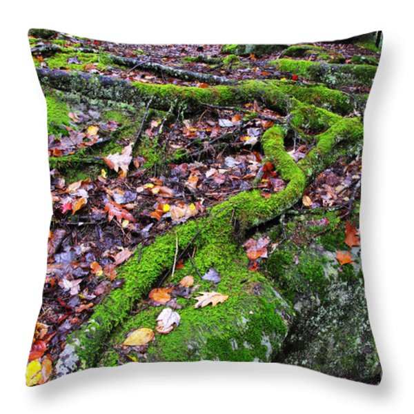 Green And Serene Throw Pillow by Thomas R Fletcher