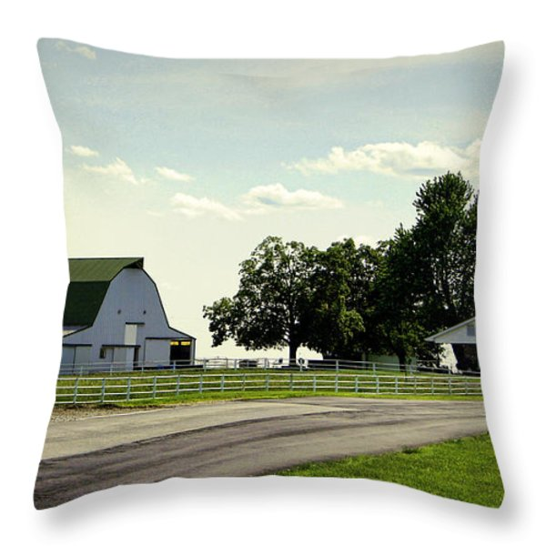 Green And White Farm Throw Pillow by Cricket Hackmann