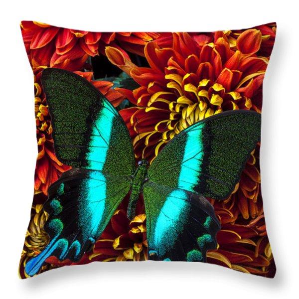 Green Blue Butterfly Throw Pillow by Garry Gay