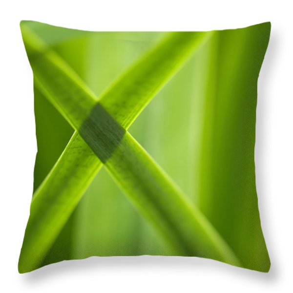 Green Crossing Throw Pillow by Silke Magino