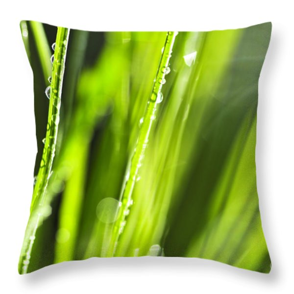 Green Dewy Grass Throw Pillow by Elena Elisseeva