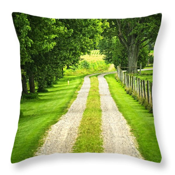 Green Farm Road Throw Pillow by Elena Elisseeva