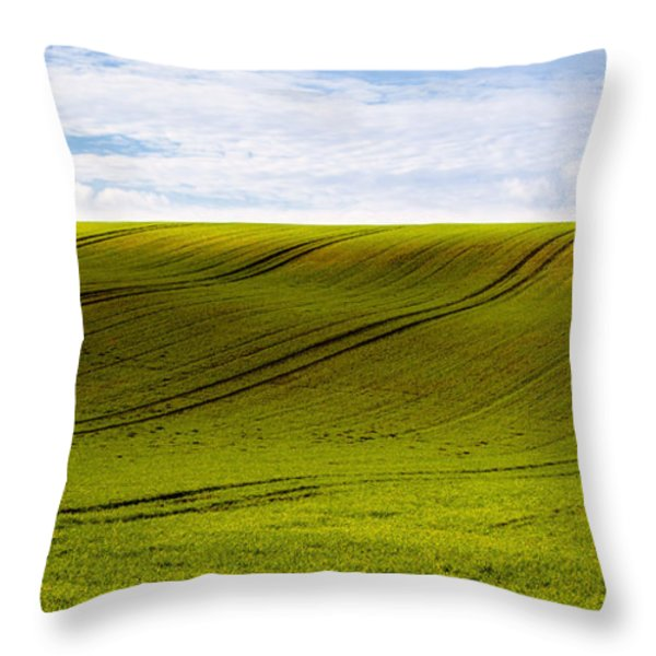 Green Hill Throw Pillow by Svetlana Sewell