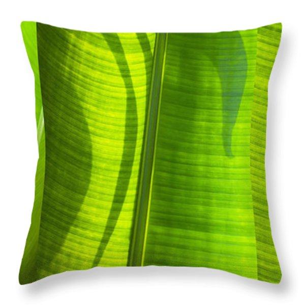 Green Leaf Throw Pillow by Setsiri Silapasuwanchai
