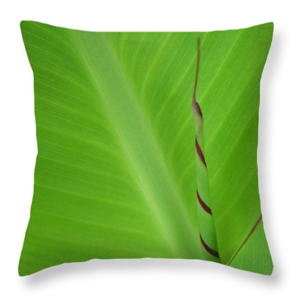 Green Leaf With Spiral New Growth Throw Pillow by Nikki Marie Smith