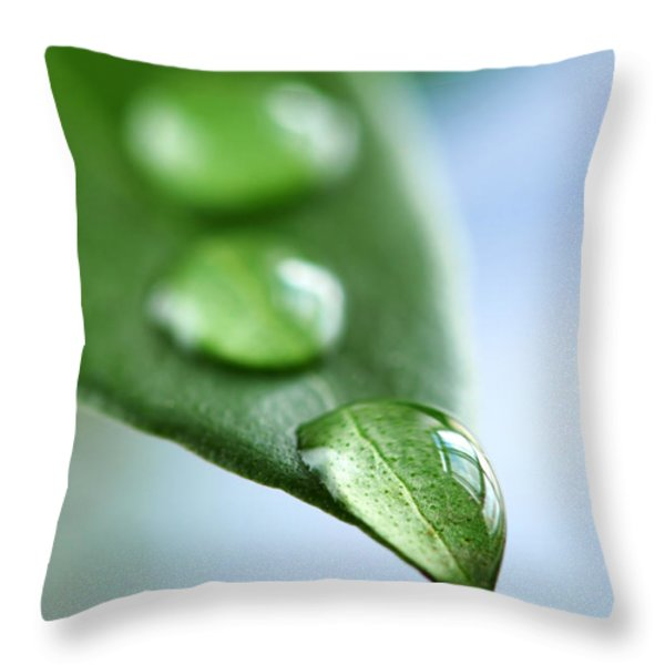 Green leaf with water drops Throw Pillow by Elena Elisseeva