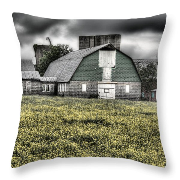 Grey Scale Throw Pillow by JC Findley