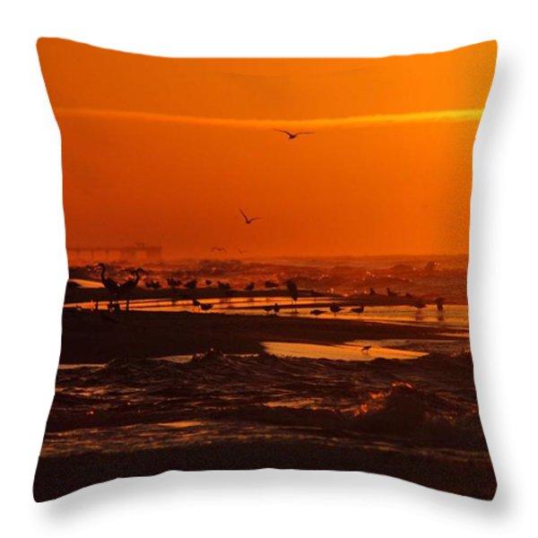 Gulf Coast Sunday Morning Throw Pillow by Michael Thomas