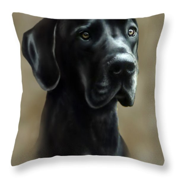 Gulliver Throw Pillow by Barbara Hymer