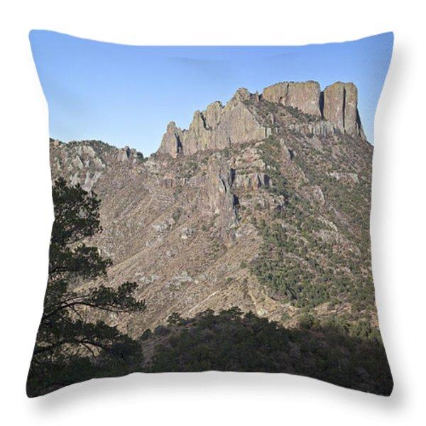 Habitat Transition Throw Pillow by Greg Dimijian