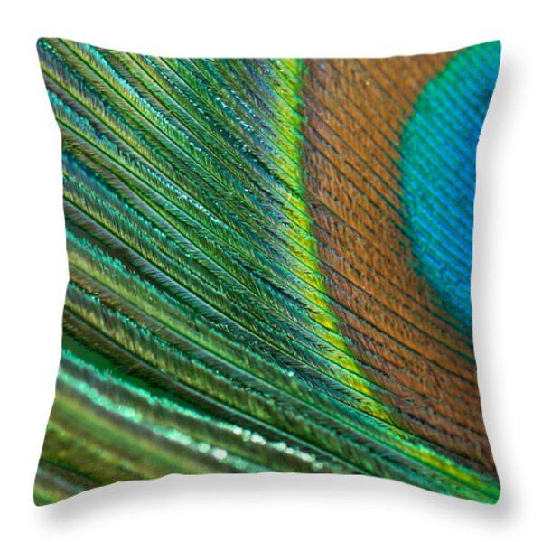 Half Cocked Throw Pillow by Lisa Knechtel