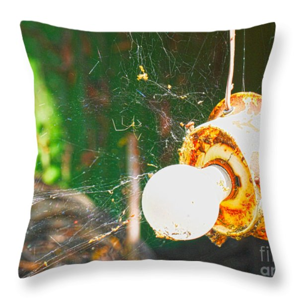 Hanging by a Web Throw Pillow by Cheryl Young