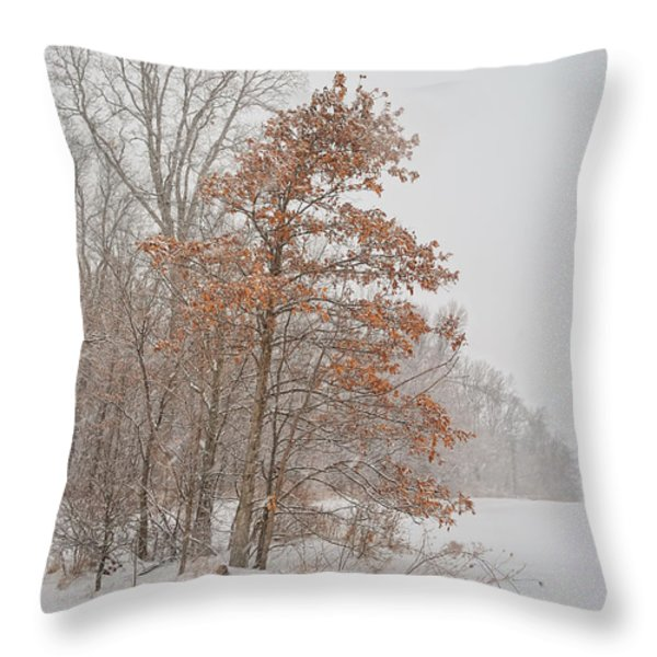 Hanging On Throw Pillow by Pamela Baker