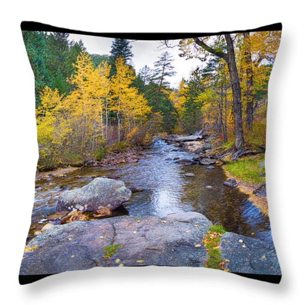 Happy Place In The Woods Panorama Poster  Throw Pillow by James BO  Insogna