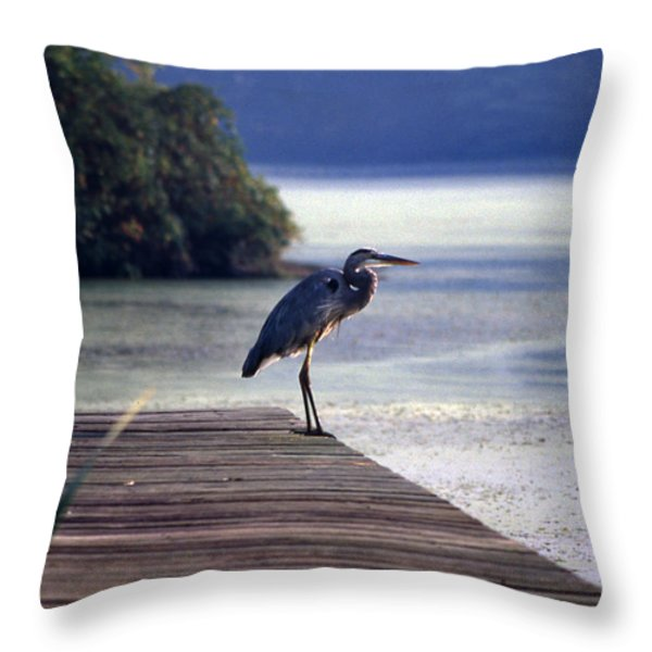 Harbor Master Throw Pillow by Skip Willits