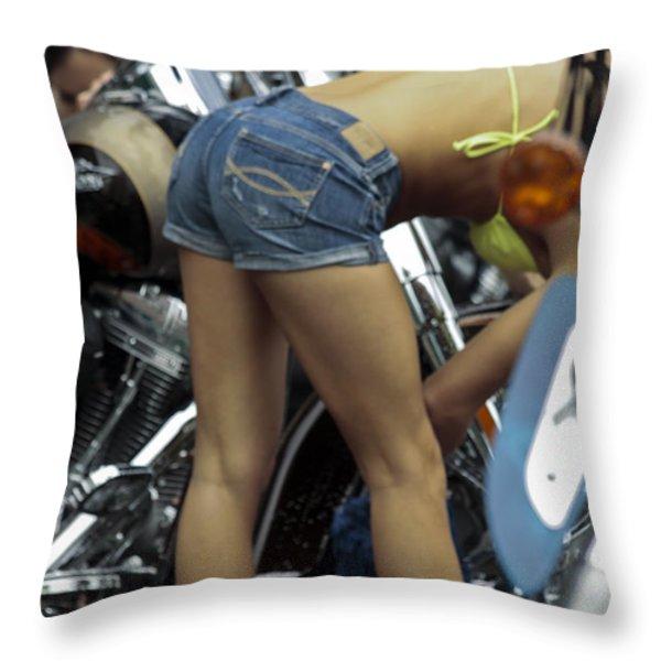 Hard At Work Throw Pillow by David Kehrli