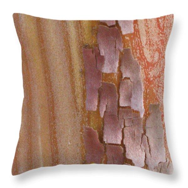 Harmonize Throw Pillow by Tina Marie