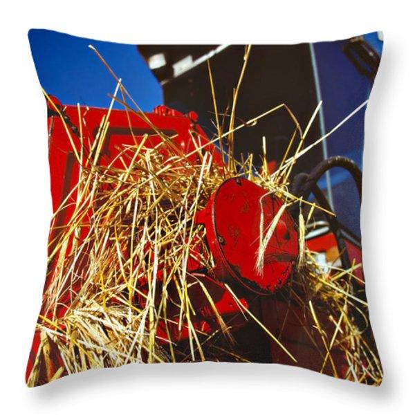 Harvesting Throw Pillow by Meirion Matthias