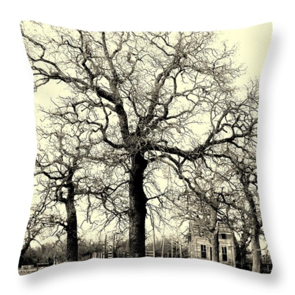 HAUNTED HOMESTEAD Throw Pillow by Joe Jake Pratt