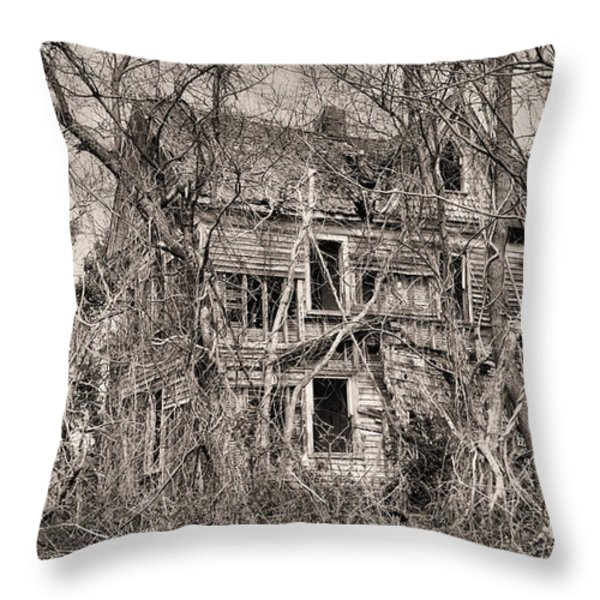 Haunting in DelMarVa Throw Pillow by JC Findley