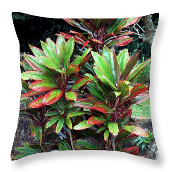 Hawaiian Ti Throw Pillow by Karon Melillo DeVega