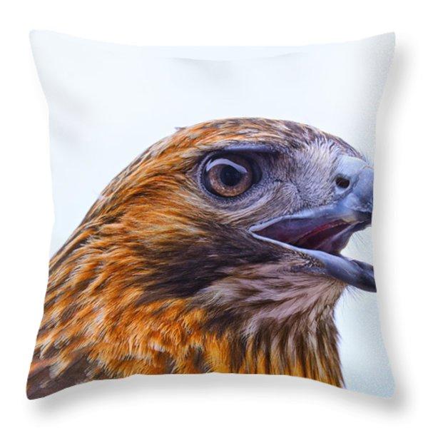 Hawk Head Throw Pillow by Peg Runyan