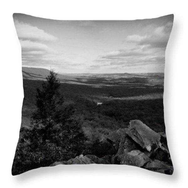 Hawk Mountain Sanctuary BW Throw Pillow by David Dehner