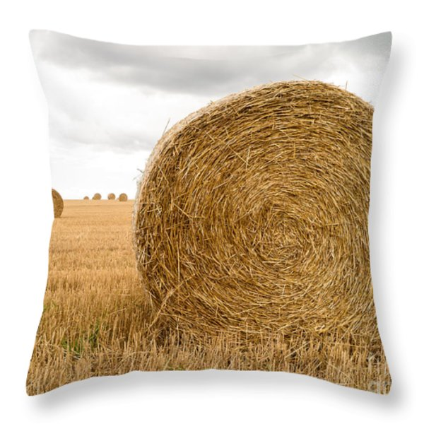 Hay Bales Throw Pillow by Edward Fielding