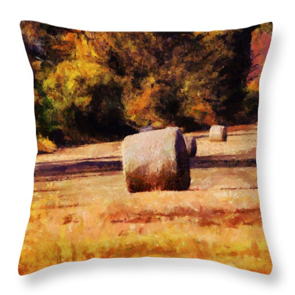 Hay Bales Throw Pillow by Jai Johnson