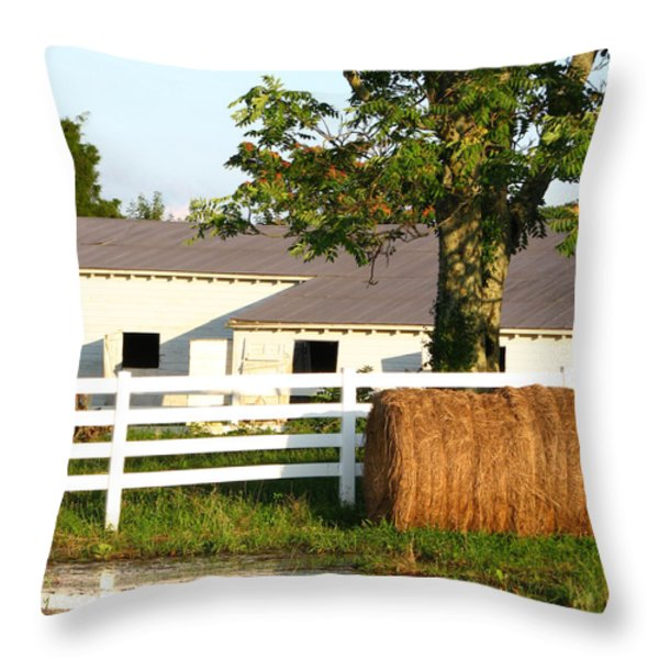 Hay Bales Near the Pond Throw Pillow by Todd A Blanchard