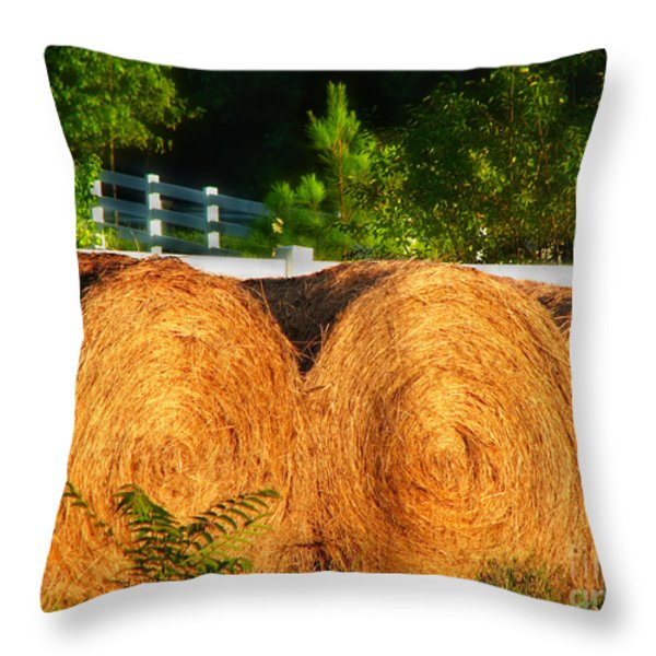 Hay Bales Throw Pillow by Todd A Blanchard