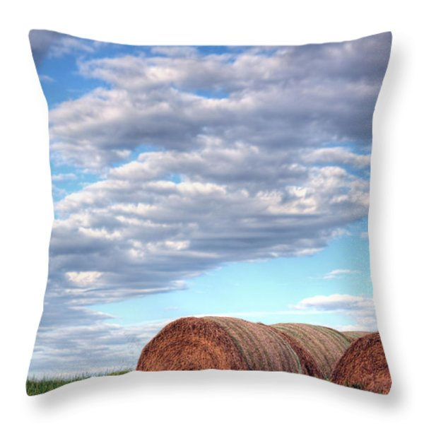 Hay It's Art Throw Pillow by JC Findley