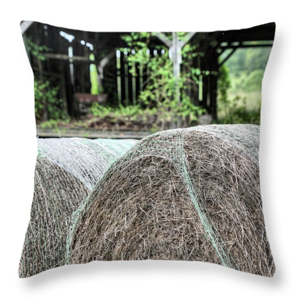 Hay Throw Pillow by JC Findley