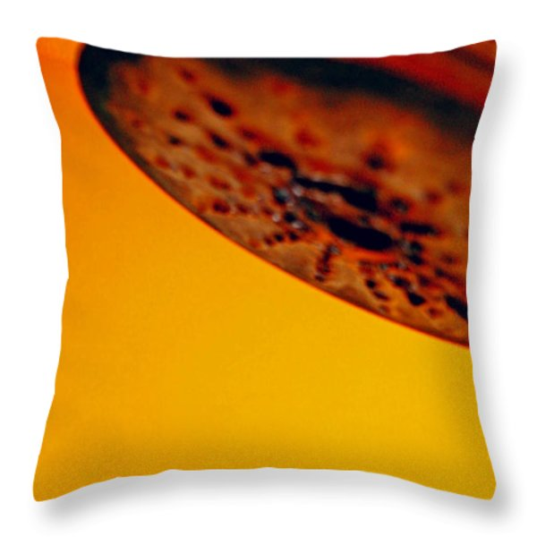 Head Throw Pillow by Skip Hunt