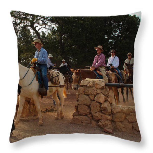 Heading Out Throw Pillow by Heidi Smith