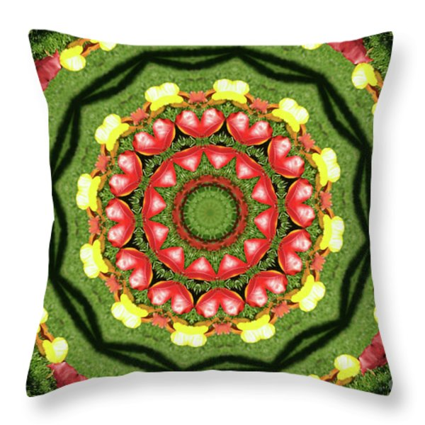 Heart Kaleidoscope Throw Pillow by Mariola Bitner