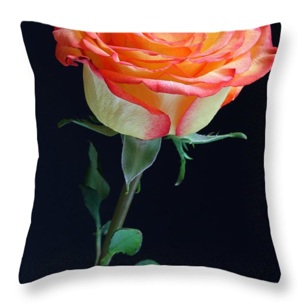 Heartwarming Throw Pillow by Juergen Roth