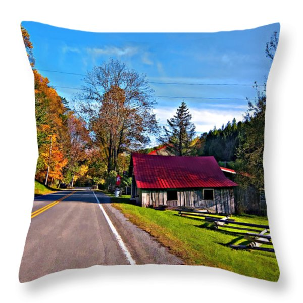 Helvetia WV painted Throw Pillow by Steve Harrington