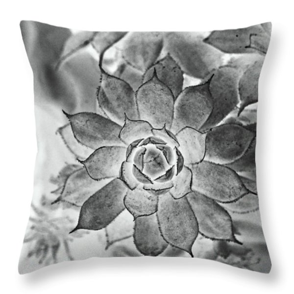 Hen And Chicks Digital Art Throw Pillow by Debbie Portwood