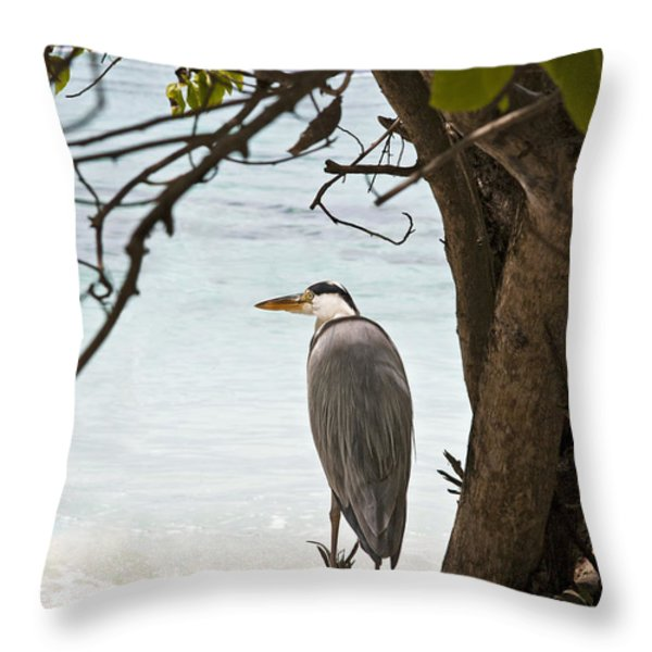 Heron Throw Pillow by Jane Rix