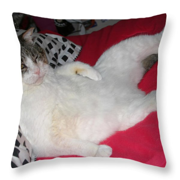 Hey Hey I'm Relaxing Here Throw Pillow by Kym Backland