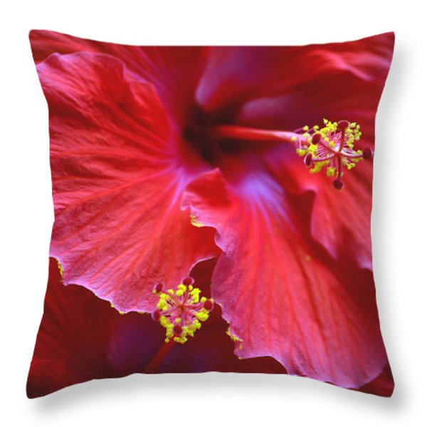Hibiscus Duo Throw Pillow by Sandi OReilly