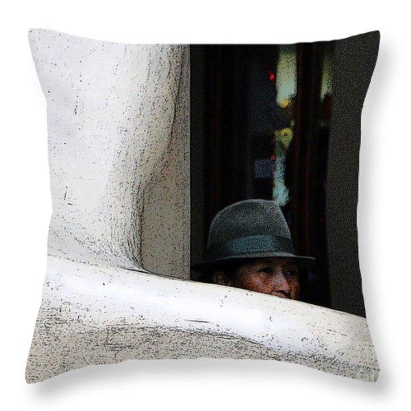 Hidden Artist Throw Pillow by Al Bourassa