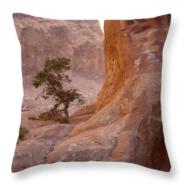 Hidden Curves Of Arches Throw Pillow by Ramie Liddle