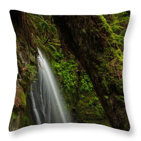 Hidden Falls Throw Pillow by Mike Reid