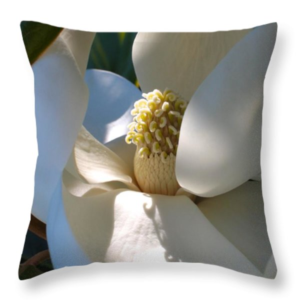 Hidden Magnolia Throw Pillow by Carol Groenen