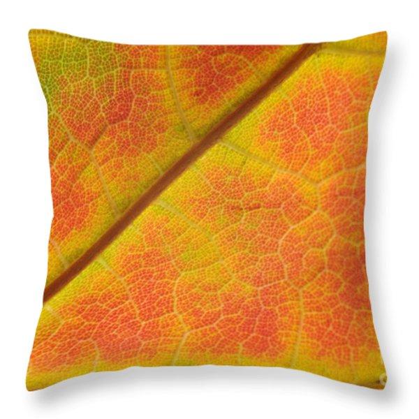Hidden Mosaic Throw Pillow by Luke Moore