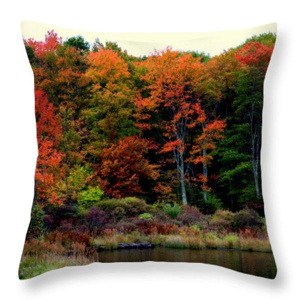 Hidden Valley Lake Throw Pillow by Karen Wiles